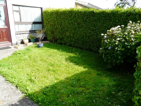 bray-garden-before-1
